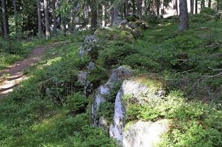 Zu Steinkreisen in Schluchsee