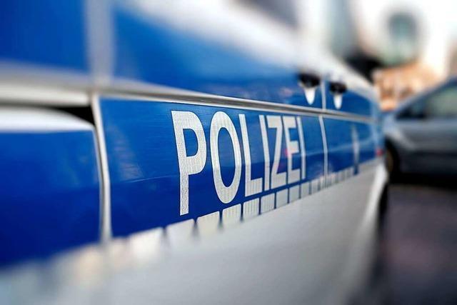Vermeintliche Hilferufe aus dem Wald – Polizei entdeckt Paar beim Sex