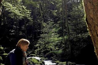 Wildbachtour Simonswald