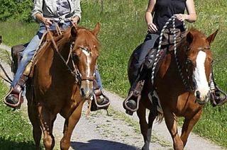 Infos, Programm rund ums Pferd in Tiefenhäusern