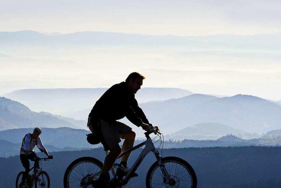 Ein Weinradweg soll Radfahrer begeistern - Badische Zeitung TICKET