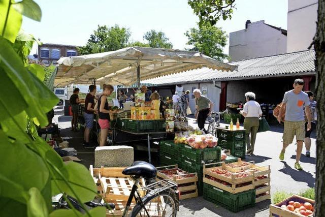 Markt mit Fabrik-Atmosphäre in Herdern