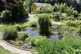 Fotos: So schön ist es jetzt im Botanischen Garten der Uni Freiburg