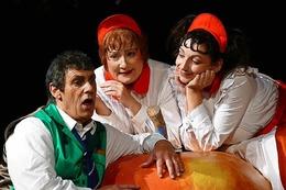 """Fotos: Premiere des Shakespeare-Klassikers """"Was ihr wollt"""" bei den Festspielen"""