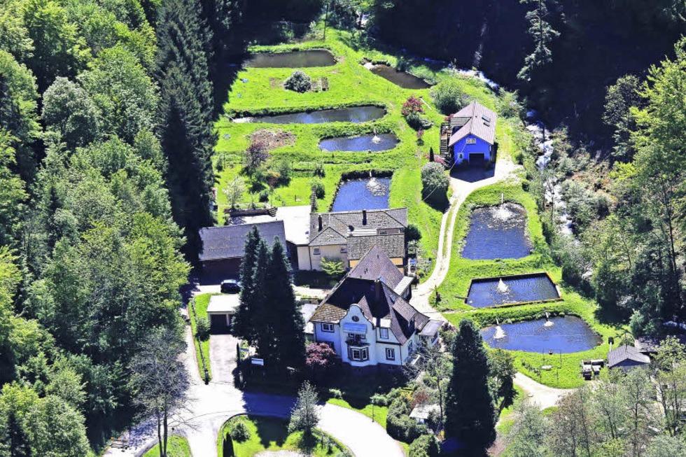 Fischfarm Günther (Schweighof) - Badenweiler