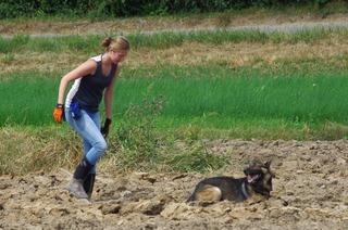 Hundesportverein Wyhlen-Grenzach