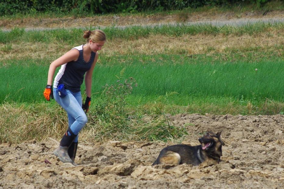 Hundesportverein Wyhlen-Grenzach - Grenzach-Wyhlen