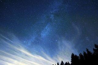 Nachhaltiger Tourismus ist auch im Schwarzwald gefragt