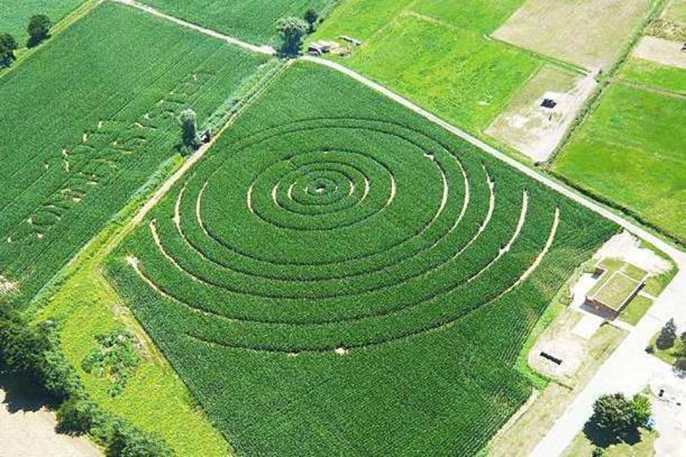 Maisfeld-Labyrinth (Opfingen) - Freiburg