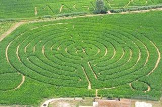 Das Maisfeldlabyrinth Opfingen in Opfingen ist wieder auf