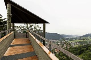 Warum der Baumkronenweg ein so beliebtes Ausflugsziel in Waldkirch ist