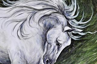 Pferdeporträts in Hartheim