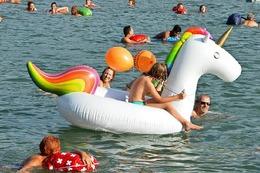 Fotos: Tausende gingen beim Basler Rheinschwimmen baden