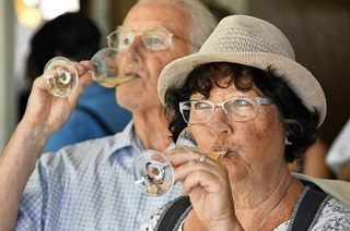 Das Staatsweingut erklärt BZ-Lesern Weinbau und Forschung