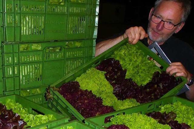 4 Uhr: Unterwegs mit dem Salat-Nacht-Kurier