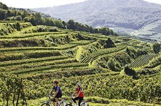 Mit dem E-Bike durch die Region