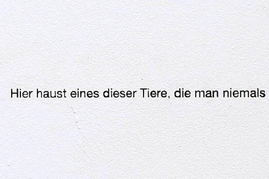 Nina Rieben in Freiburg - Badische Zeitung TICKET