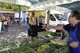 Bei Ukulele-Klängen Gemüse in Betzenhauen kaufen