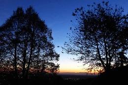 Fotos: Der goldene Herbst in der Ortenau