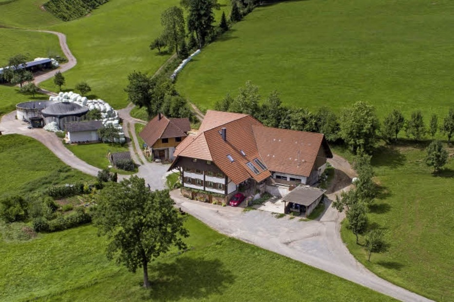 Schmetterhof Robert Himmelsbach (Wittelbach) - Seelbach