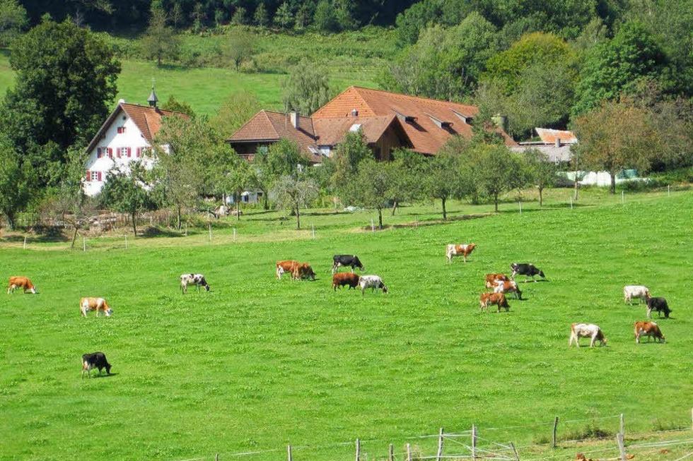 Gullerhof - Glottertal