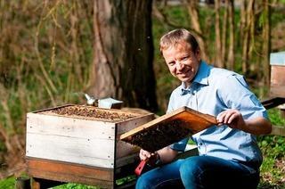 Bienenkundler: Interesse an der Biene steigt seit zehn Jahren an