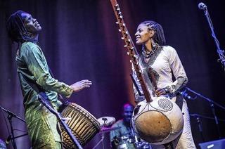 Sona Jobarteh, erste weibliche Kora-Virtuosin kommt nach Offenburg