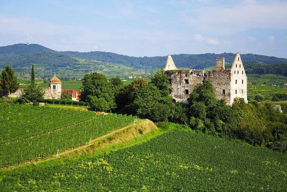 Schlossruine (Burkheim) - Vogtsburg