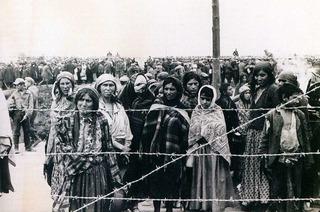 Verachtet, entrechtet, getötet – die Geschichte der Freiburger Sinti und Roma