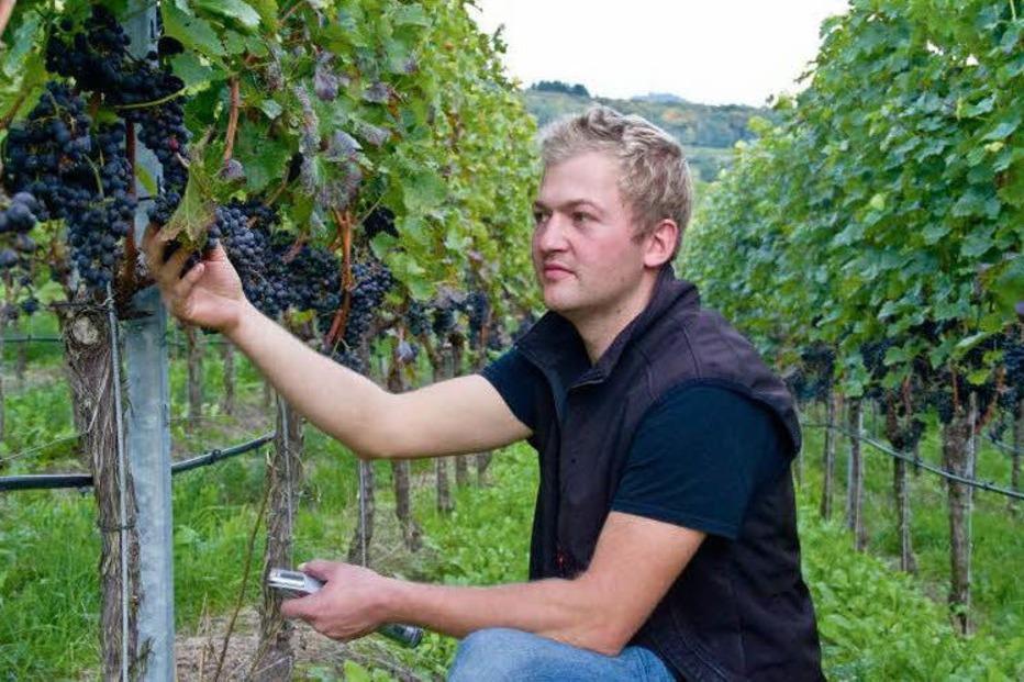 Weingut und Haubrennerei Johannes Landerer - Vogtsburg
