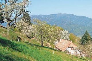 Ferme Auberge Bruckenwald
