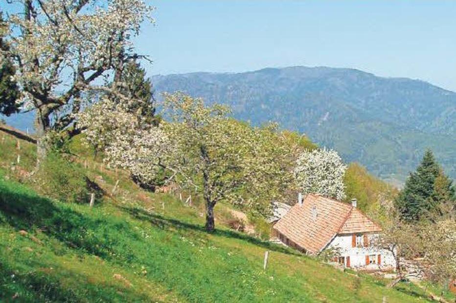 Ferme Auberge Bruckenwald - Niederbruck