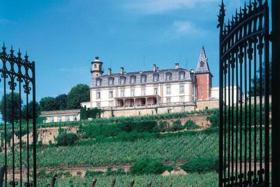 Le Château d'Isenbourg - Rouffach