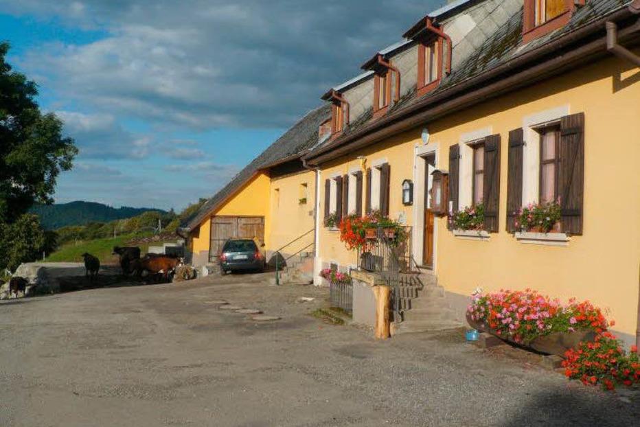 Ferme Auberge du Freundstein - Willer-sur-Thur