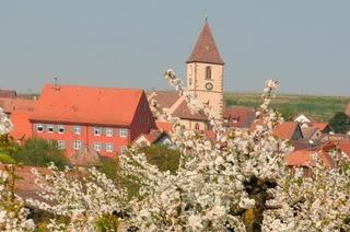 Kath. Kirche St. Pankratius (Burkheim)