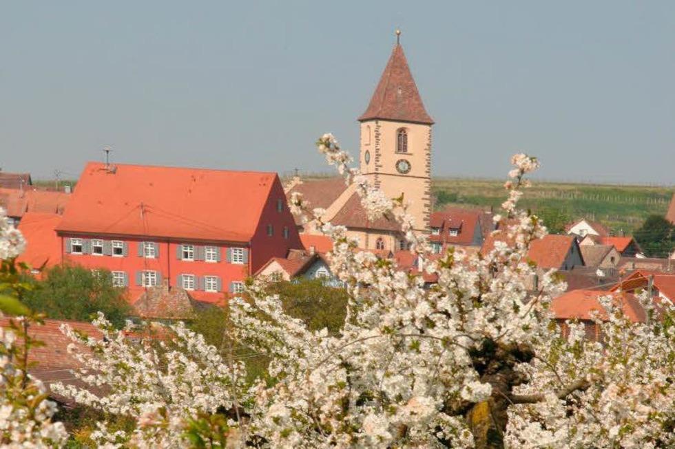 Kath. Kirche St. Pankratius (Burkheim) - Vogtsburg