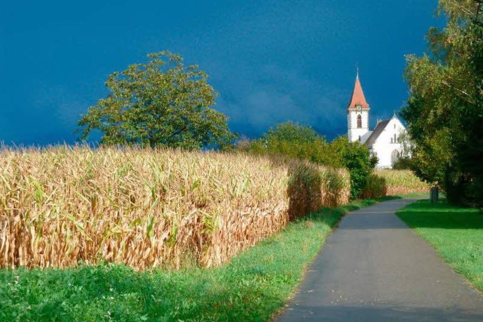 Katholische Kirche - Reute