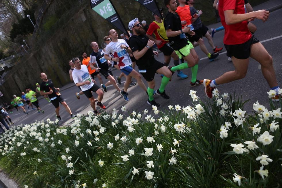 Lukas Naegele und Marianne Okle gewinnen den 15. Freiburg Marathon - Badische Zeitung TICKET
