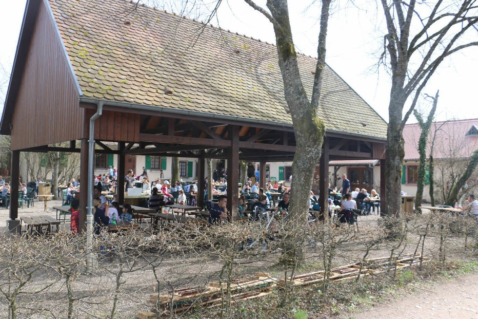 Spielplatz Affenberg - Kintzheim