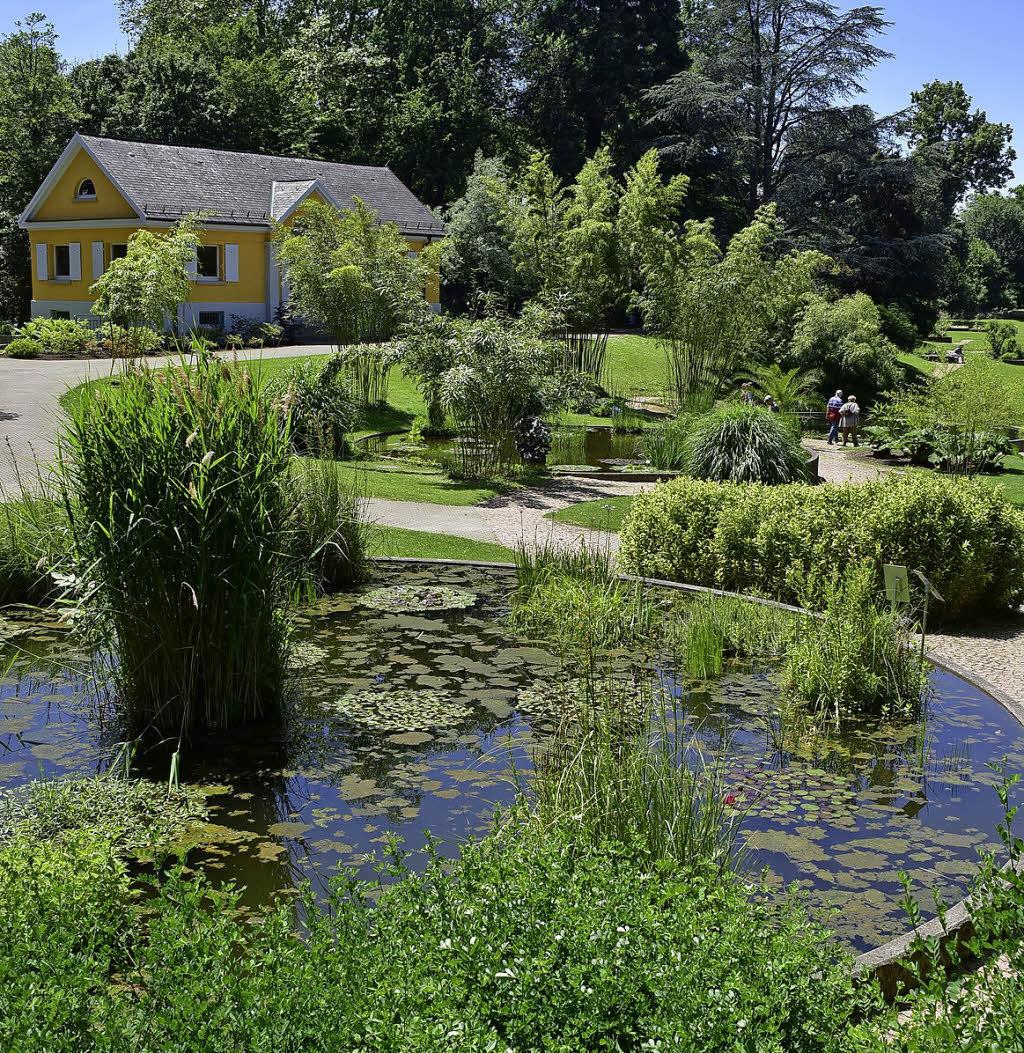 Botanischer Garten Karlsruhe öffnungszeiten: Atemberaubend Botanischer Garten Freiburg Foto Beste