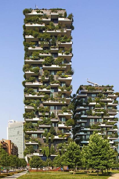 Bäume auf die Dächer - Wälder in die Stadt - Badische Zeitung TICKET