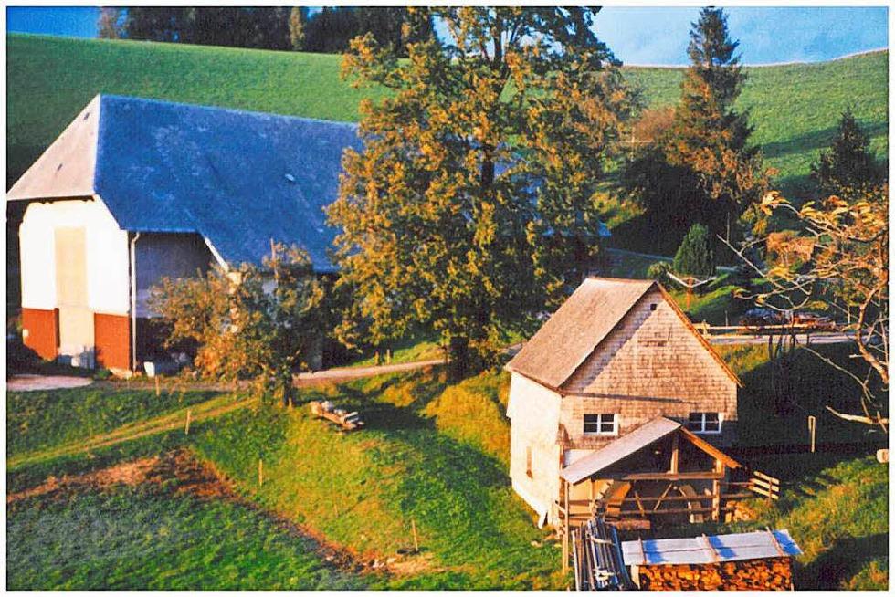 Danielhof-Mühle - Sankt Märgen