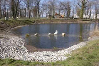 Schwanenweiher