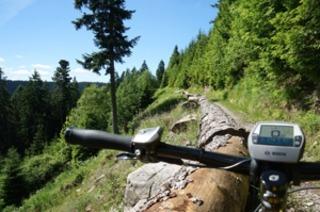 Mit dem Mountainbike auf Single-Trails durch den Nordschwarzwald