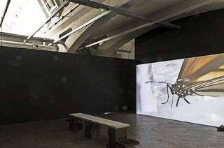 """Étienne Chambauds """"Nœuds Négatifs"""" in La Kunsthalle Mulhouse"""