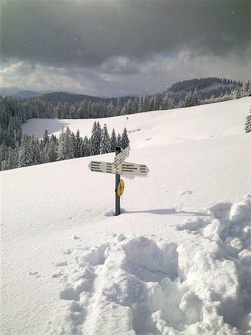 Rodelbahn Krunkelbachhütte - Bernau