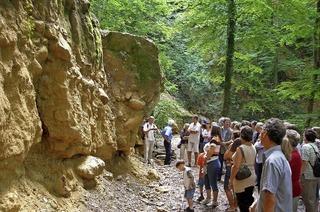 Musik und Führungen in den Steinbrüchen Pfaffenweiler