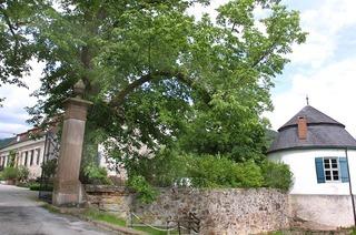 Schloss Dautenstein