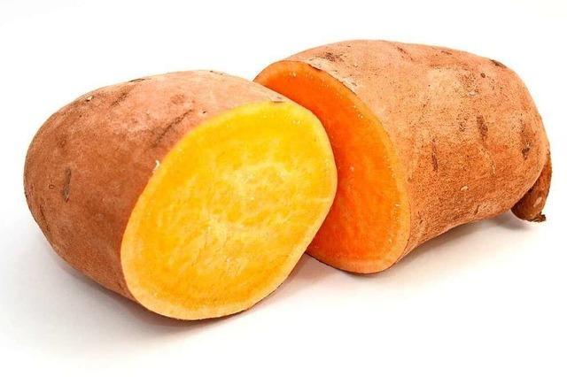 Prallvolle Knolle: die Süßkartoffel