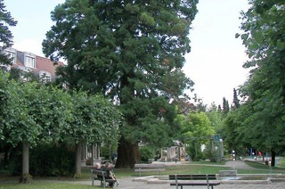 Blankenhorn-Park